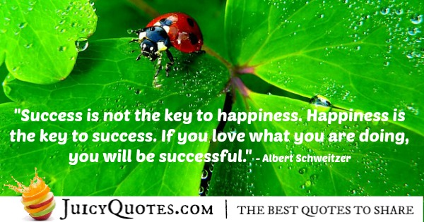 Quote About Success - Albert Schweitzer