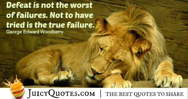 Quote About Success - George Edward Woodberry