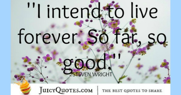 Funny Quote - Steven Wright 2
