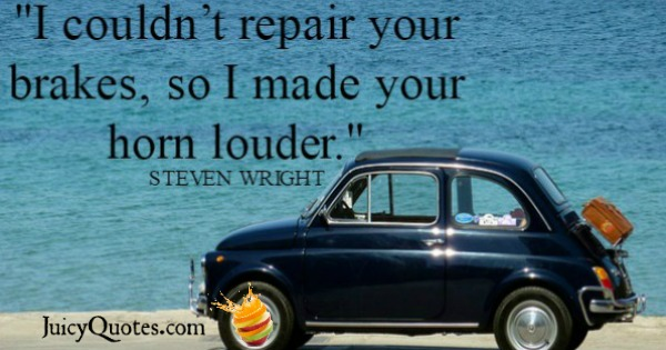 Funny Quote - Steven Wright
