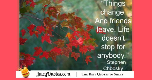 Quote About Change - Stephen Chbosky