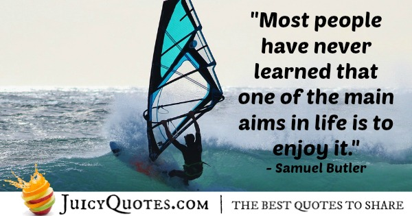 Quote About Life - Samuel Butler-2