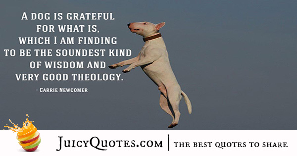 Quotes About Dogs - 24