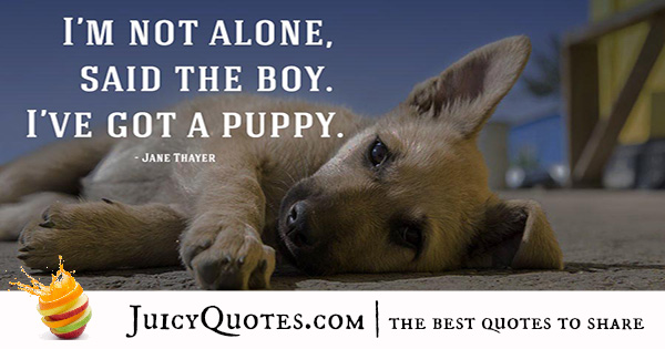 Quotes About Dogs - 9