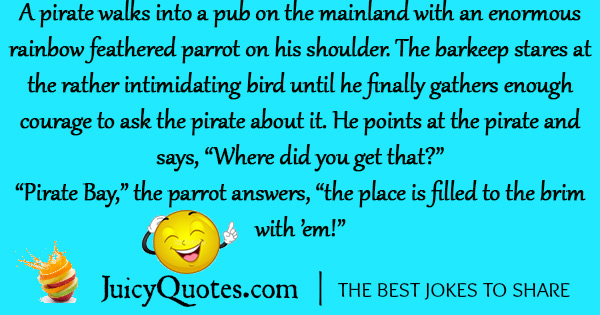 Funny Pirate Joke - 18