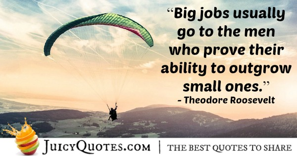 Quote About Work - Theodore Roosevelt - 2