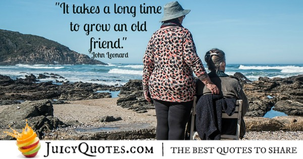 friendship-quote-john-leonard
