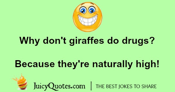 giraffe joke about being high
