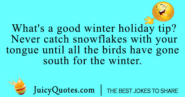 Snowflake and bird joke