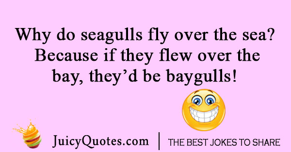 Flying seagull joke