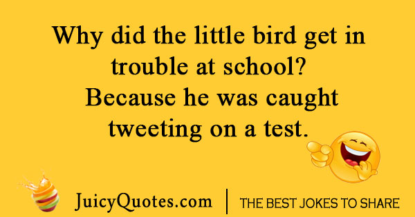 Little bird at school joke