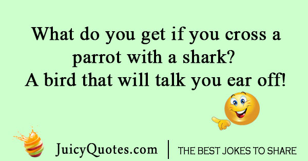 Parrot and shark joke