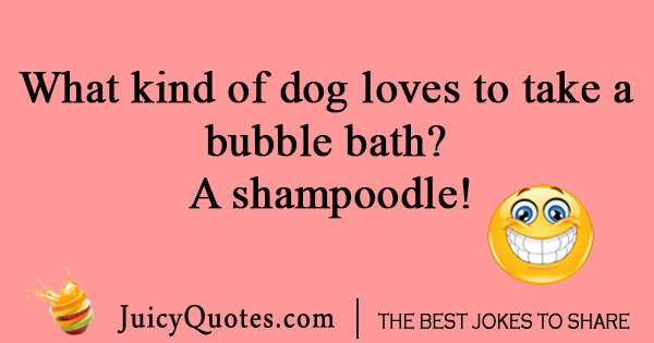 Dog bubble bath joke