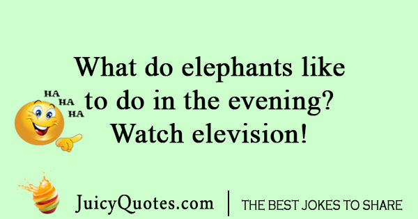 Elephant zoo joke