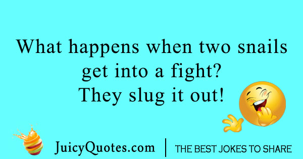 Two fighting snails joke