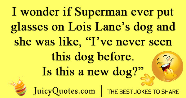 Superman dog joke