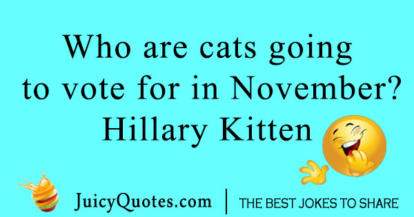 Hillary Clinton and cat joke