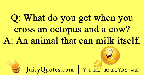 Octopus and cow joke
