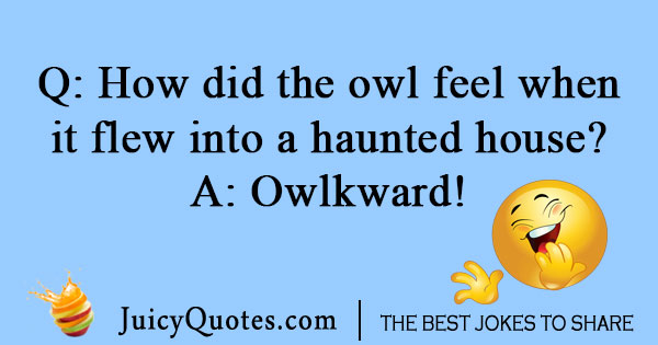 Flying owl joke
