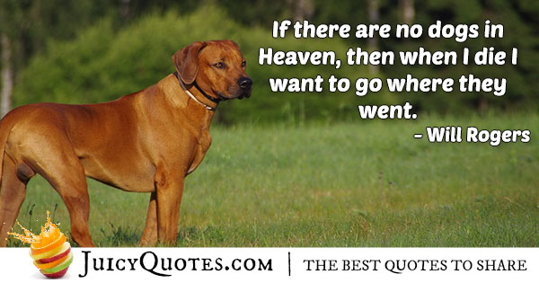 Dogs In Heaven Quote