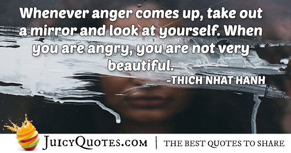 When Anger Comes Quote