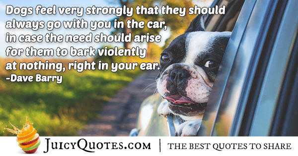 Animal In Car Quote