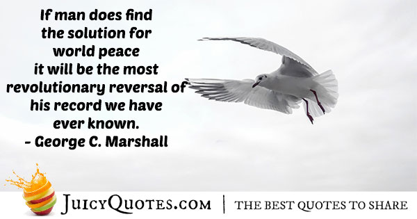 Solution For World Peace Quote