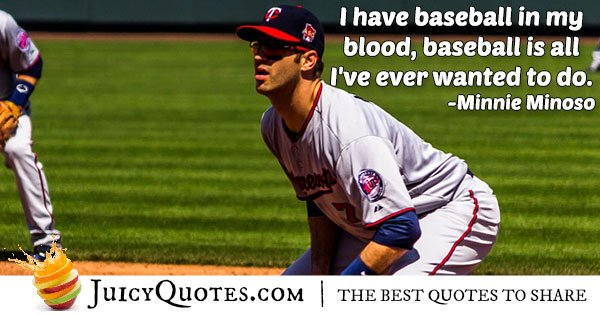 All I Want Is Baseball Quote