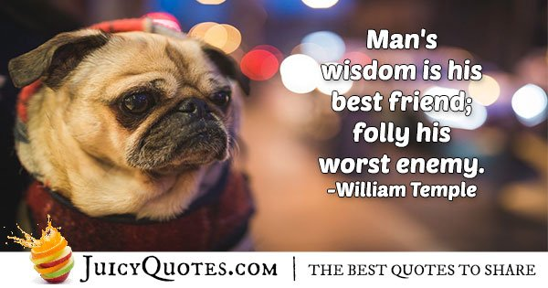 Wisdom Friendship Quote