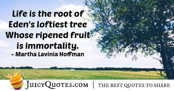Fruit of Immortality Quote