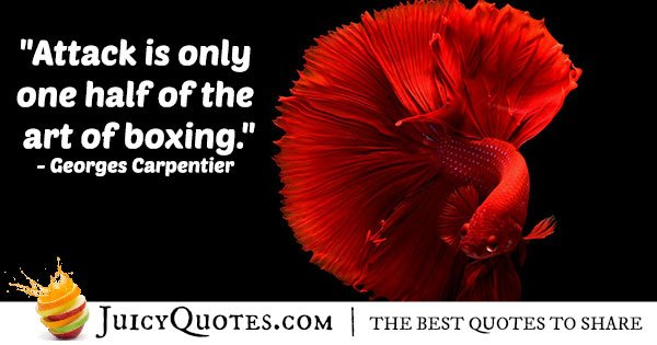 Art of Boxing Quote