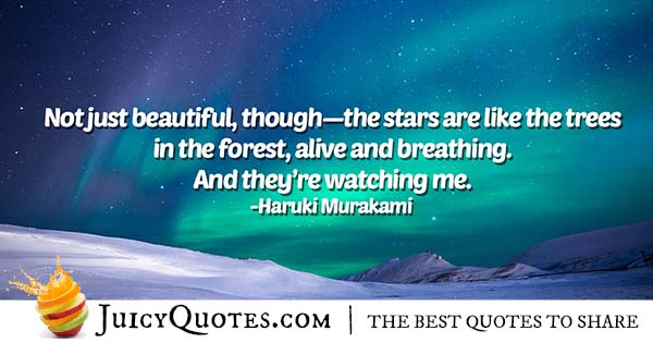 Beautiful Stars Quote