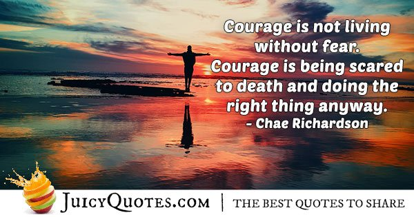 Quote About Courage and Fear