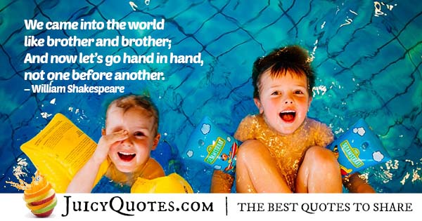 Brother and Brother Quote