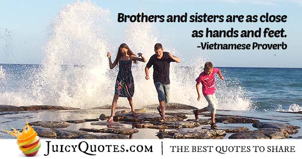 Quote About Brothers and Sisters