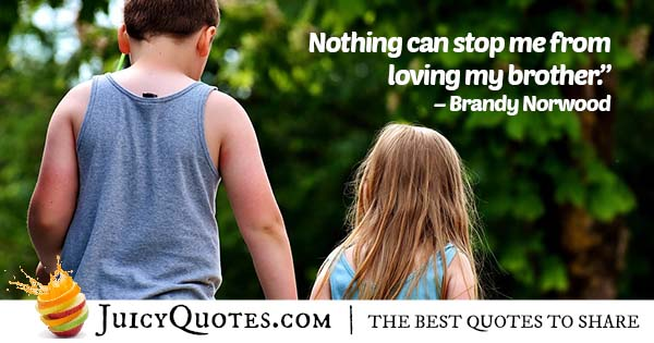 Loving My Brother Quote