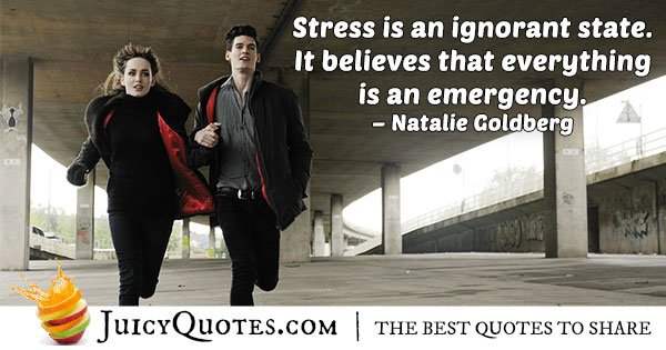 Stress and Ignorance Quote