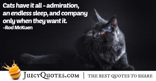 Cats Have It All Quote