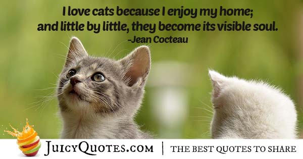 I Love Cats Quote