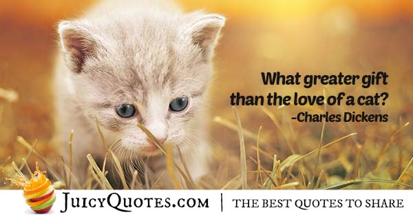 Gift Of A Cat Quote