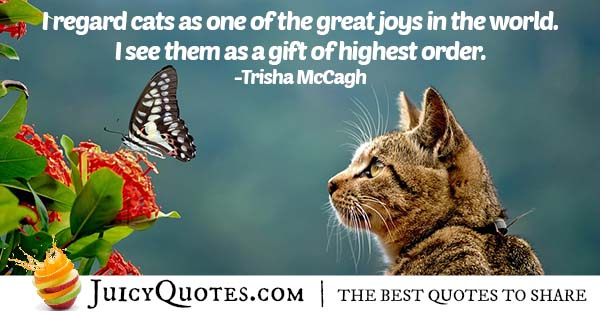 Joy of Cats Quote