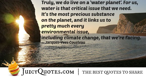 Environmental Issues Quote