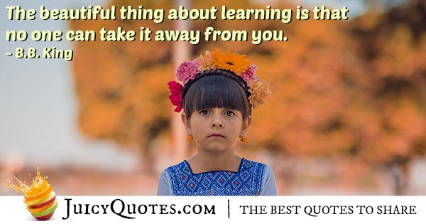Beauty of Learning Quote