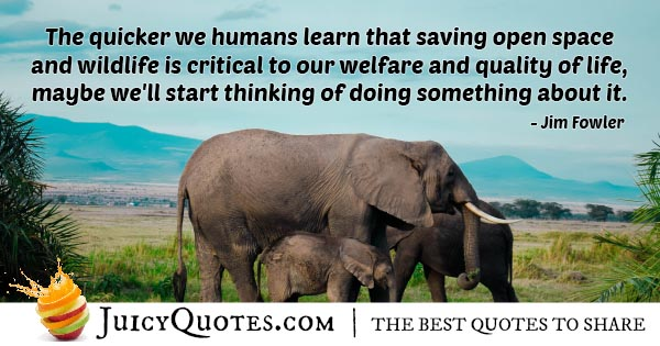 Welfare and Quality of Life Quote