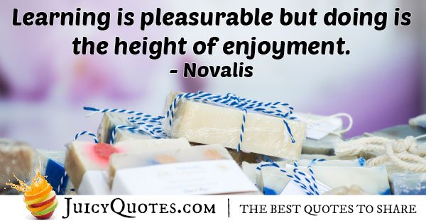 Pleasure of Learning Quote