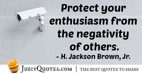 Protect Your Enthusiasm Quote