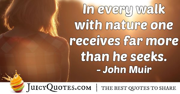 Walk With Nature Quote