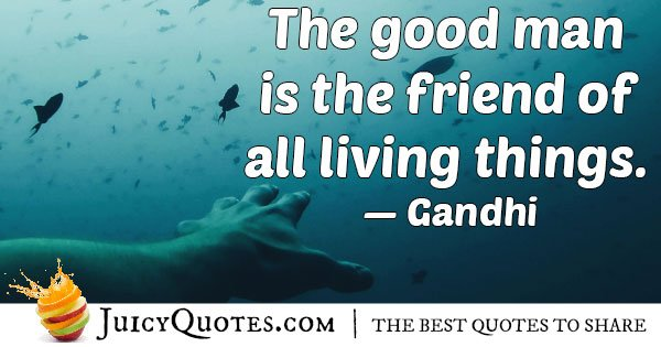 Friend of Living Things Quote