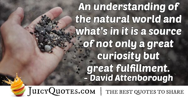 Understanding the Natural World Quote