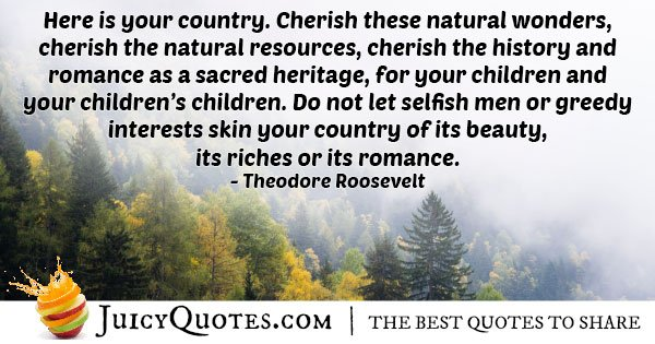 Cherish Natural Wonders Quote